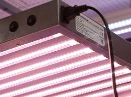 t5 vs led grow lights amazon com aibc supert 4ft 8tb t5 160w led grow light panel