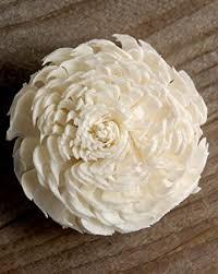 sola flowers sola flowers 2 2 5in white chorki 12 flowers