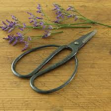 forged scissors my backyard forge pinterest scissors