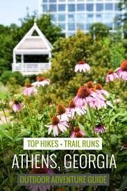 best 25 athens georgia ideas on pinterest ga game uga football