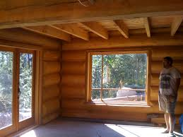 Pictures Of Log Home Interiors Log Home Interior Design Ideas Houzz Design Ideas Rogersville Us