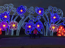 retama park christmas lights airing my laundry one post at a time the holiday magic festival