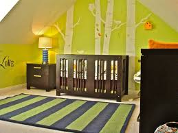 Best Amazing Baby Nurseries Images On Pinterest Home - Baby bedroom theme ideas