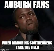 Auburn Memes - have a laugh at auburn cocky nation