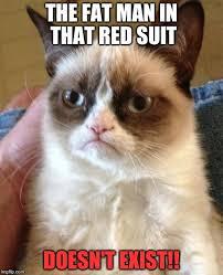 Cat Suit Meme - grumpy cat meme imgflip