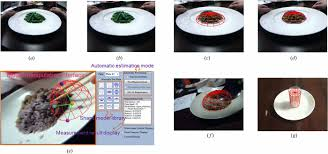 model based measurement of food portion size for image based