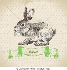 vintage rabbit vintage background with easter rabbit vector search