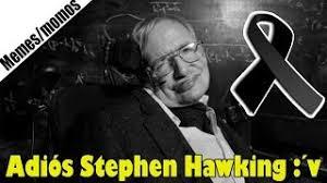 Stephen Hawking Meme - stephen hawking s last words meme alert video