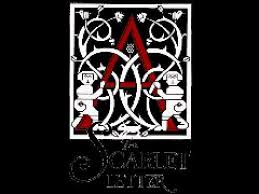 the scarlet letter introductory by the custom house youtube