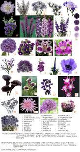 best 10 plum wedding flowers ideas on pinterest plum wedding