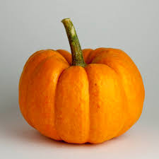 small pumpkins gunter wilhelm curried pumpkin soup