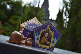 Where To Buy Chocolate Frogs Six Great Souvenirs From The Universal Orlando Resort