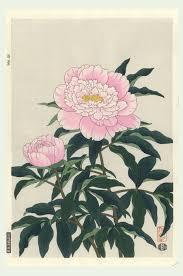 Japanese Flower Artwork - 940 best japanese images on pinterest japanese painting chinese