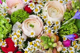 san diego flowers balboa florist same day flowers delivery flower shop san diego