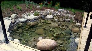 backyards cool backyard fish pond diy 132 inspirations appealing