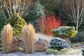 Garden Pictures Ideas Winter Landscaping Ideas Large Size Of Garden Gardening Ideas