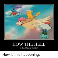 Zubat Meme - how the hell is zubat holding how is this happening pokemon meme