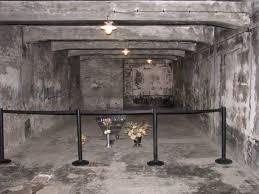 chambres a gaz auschwitz birkenau pour ne jamais oublier