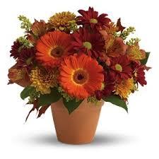 Thanksgiving Flowers Thanksgiving Flowers Almonte On Florist Keepsakes Boutique