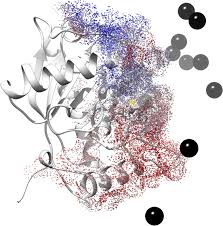 A Neutralizing Recombinant Single Chain Antibody Scfv Against
