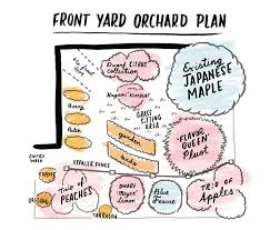 The  Best Orchard Design Ideas On Pinterest Tree Deck - Backyard orchard design