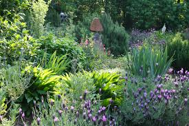 shocking ideas herbal gardens simple decoration 78 best images