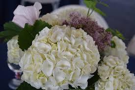 matrimonio fiori come scegliere i fiori per il matrimonio 10 consigli da non perdere