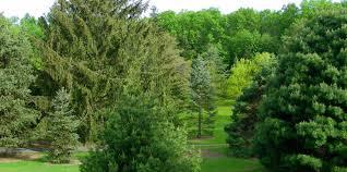 Arboretum by Graver Arboretum Of Muhlenberg College American Public Gardens