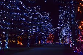 christmas christmas fabulous animated lights giphy gifs find