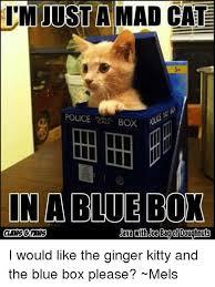 Mad Cat Memes - just a mad cat police box in a blue box jana with joe bago doughnuts