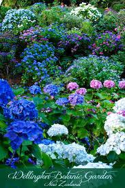 New Zealand Botanical Gardens Colourful Photos From Wellington Botanic Garden