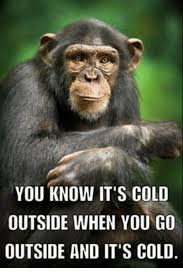 Cold Outside Meme - you know it s cold outside when you go outside and it s cold