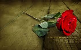 download fallen love happy valentines wallpaper hd
