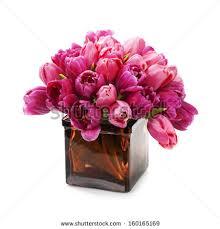 Red Flowers In A Vase Flower Vase Stock Images Royalty Free Images U0026 Vectors Shutterstock