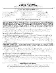 sample resume for a team leader position sprinklerrepairman us