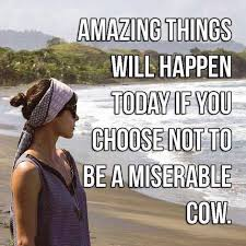 Be Happy Memes - response to miserable cow meme from someone with depression the