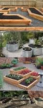 Raised Beds For Gardening Diy Raised Beds Growing Food Anywhere Info Graphic