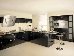 black kitchen cabinet ideas black kitchen cabinets ideas home design ideas