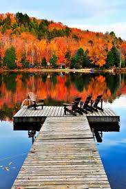 Fall Autumn by 1206 Best Autumn Images On Pinterest Fall Autumn Fall And Places