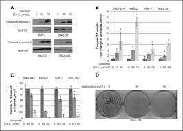 celecoxib inhibits interleukin 6 interleukin 6 receptor u2013induced