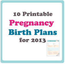 21 best birth plan templates examples images on pinterest