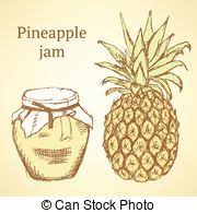 pineapple illustrations and clip art 13 176 pineapple royalty