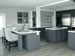 light gray stained kitchen cabinets light gray cabinets shaker light gray kitchen cabinets light gray
