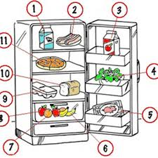 food for today homework activities answers pic