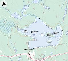 wood lake muskoka real estate services