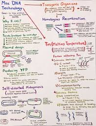 14 best nis images on pinterest molecular biology ap biology