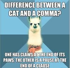 Funny Grammar Memes - 20 really funny grammar jokes and puns laugh away humoropedia
