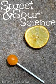 sweet and sour science experiment playdough to plato