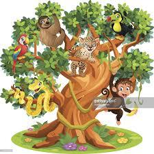 cute cartoon snake monkey jaguar and birds in jungle tree vector