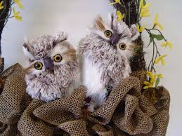 Owl Decorations For Christmas Tree by New Feathered Owls From Raz Trendy Tree Blog Holiday Decor